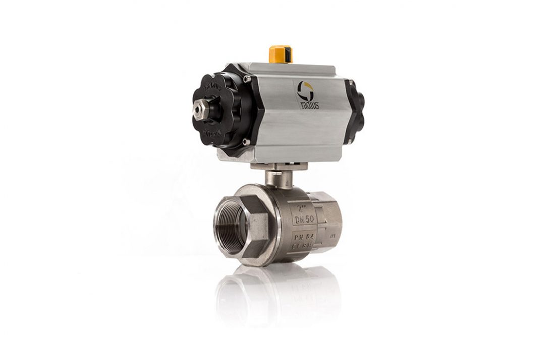 Pneumatic 22D SS Ball Valve Assembly